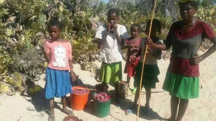 Famine au sud de Madagascar: envoi de dons pour nourrir les enfants scolarisés