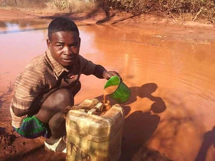 Zone de Texte: Si vous souhaitez venir en aide aux enfants malgaches, en soutenant la confection de repas dans les écoles,   vous pouvez faire un don auprès de l'association FANANTENANA Espoir ( partenaire de la Congrégation des Frères de la Doctrine Chrétienne)  qui transmettra directement l'argent aux sœurs de Tulear sur place à Madagascar.  Pour ce faire , vous pouvez effectuer un virement sur le compte de l'association :  Crédit Mutuel Erstein IBAN : FR76 1027 8012 0000 0173 7814 568 BIC : CMCIFR2A  Ou envoyer un chèque bancaire à l'ordre de FANANTENANA Espoir FANANTENANA – ESPOIR Trésorière : Mme Geneviève LORENTZ 12a, rue de la Forêt 67700 Saint Jean Saverne  Un reçu fiscal pourra vous être envoyé sur demande.
